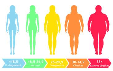 Dijeta prije uzv abdomena